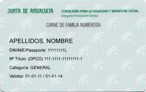 Carnet_Familia_Numerosa_I