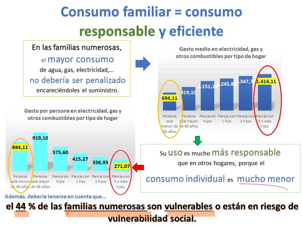 consumo responsable, bono social parafamilias numerosas